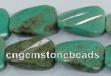 CAA101 15.5 inches 18*25mm faceted & twisted rectangle grass agate beads