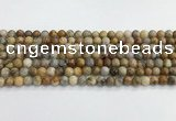 CAA2349 15.5 inches 6mm round crazy lace agate beads wholesale