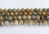 CAA2353 15.5 inches 14mm round crazy lace agate beads wholesale
