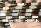 CAA3941 15.5 inches 8*34mm rice Madagascar agate beads wholesale