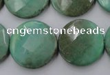 CAG1615 15.5 inches 25mm faceted coin green grass agate beads