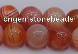 CAG6344 15 inches 12mm round red botswana agate beads wholesale