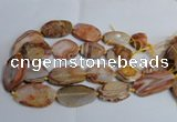 CAG7314 15.5 inches 20*30mm - 30*40mm freeform red botswana agate beads