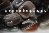 CAG739 15.5 inches 14*18mm rectangle botswana agate beads wholesale