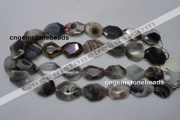 CAG761 15.5 inches 18*25mm faceted freeform botswana agate beads