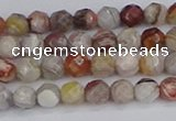 CAG9860 15.5 inches 4mm faceted round Mexican crazy lace agate beads