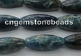 CAP310 15.5 inches 11*25mm rice natural apatite gemstone beads