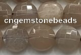 CCB725 15.5 inches 8mm faceted coin moonstone gemstone beads