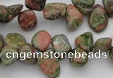 CCH636 15.5 inches 6*8mm - 10*14mm unakite gemstone chips beads