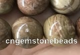 CCJ475 15.5 inches 14mm round rainbow jasper beads wholesale