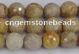 CFC230 15.5 inches 8mm faceted round fossil coral beads