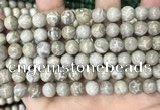 CFC330 15.5 inches 8mm round fossil coral beads wholesale