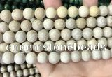 CFC335 15.5 inches 10mm round fossil coral beads wholesale