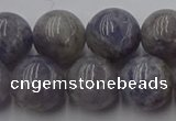CIL103 15.5 inches 10mm round iolite gemstone beads wholesale