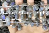 CLB1044 Top drilled 8*12mm faceted briolette labradorite beads