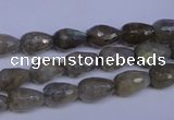 CLB501 15.5 inches 6*10mm faceted teardrop labradorite beads
