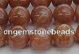 CMS1005 15.5 inches 14mm round AA grade moonstone gemstone beads