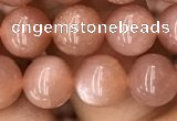 CMS1476 15.5 inches 8mm round moonstone beads wholesale