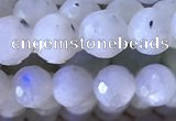 CMS1855 15.5 inches 6mm faceted round white moonstone beads wholesale