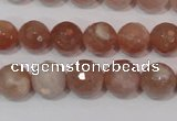 CMS765 15.5 inches 10mm faceted round natural moonstone beads