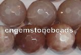 CMS770 15.5 inches 20mm faceted round natural moonstone beads