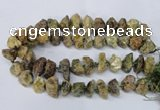 CNG1599 15.5 inches 15*20mm - 20*25mm nuggets green garnet beads