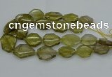 CNG5284 15.5 inches 20*30mm - 35*45mm faceted freeform lemon quartz beads