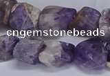 CNG5532 15.5 inches 10*14mm - 12*16mm nuggets dogtooth amethyst beads