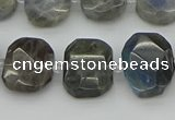 CNG5722 15.5 inches 12*16mm - 15*20mm faceted freeform labradorite beads