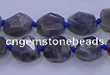 CNG5790 10*12mm - 10*14mm faceted freeform labradorite beads