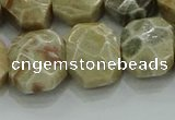 CNG5865 8*12mm - 12*16mm faceted freeform chrysanthemum agate beads