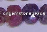 CNG6306 15.5 inches 13*18mm - 15*20mm faceted freeform tourmaline beads