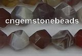 CNG7347 15.5 inches 10mm faceted nuggets botswana agate beads
