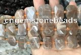 CNG7766 13*18mm - 15*25mm faceted freeform orange moonstone beads