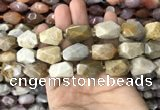 CNG7843 12*16mm - 15*25mm faceted nuggets fossil coral beads