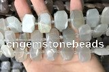 CNG7880 13*18mm - 15*25mm faceted freeform moonstone beads