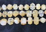 CNG8674 12*20mm - 20*33mm faceted nuggets citrine beads