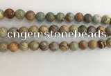 CNS703 15.5 inches 10mm round serpentine jasper beads wholesale