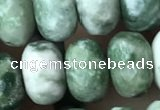 CRB5157 15.5 inches 5*8mm faceted rondelle green spot stone beads