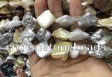 CSB2168 15.5 inches 16*16mm - 18*20mm baroque mixed shell pearl beads
