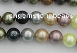CSB339 15.5 inches 10mm round mixed color shell pearl beads