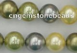 CSB380 15.5 inches 14mm round mixed color shell pearl beads