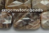 CSS115 15.5 inches 20*30mm faceted rectangle natural sunstone beads