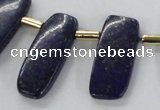 CTD1924 Top drilled 15*20mm - 15*45mm freeform lapis lazuli beads