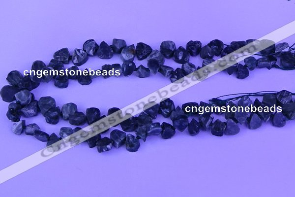 CTD3861 Top drilled 8*10mm - 10*12mm freeform seraphinite beads