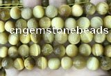 CTE2011 15.5 inches 12mm round golden tiger eye beads wholesale