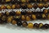 CTG01 15.5 inches 2mm round tiny tigers eye beads wholesale