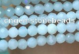 CTG1049 15.5 inches 2mm faceted round tiny amazonite beads