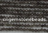 CTG200 15.5 inches 2mm faceted round tiny smoky quartz beads