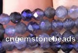 CTG754 15.5 inches 3mm faceted round tiny iolite gemstone beads
